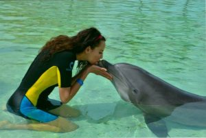 Swimming with Dolphins at Atlantis Resort Bahamas