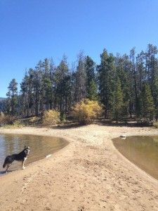 Audra Ogilvy and Profit at Dillon Reservoir