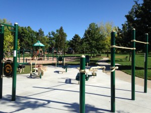 Boulder Outdoor Exercise Equipment Fitness Circuit