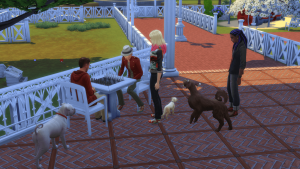 the sims meet other sims with dogs at a cafe park